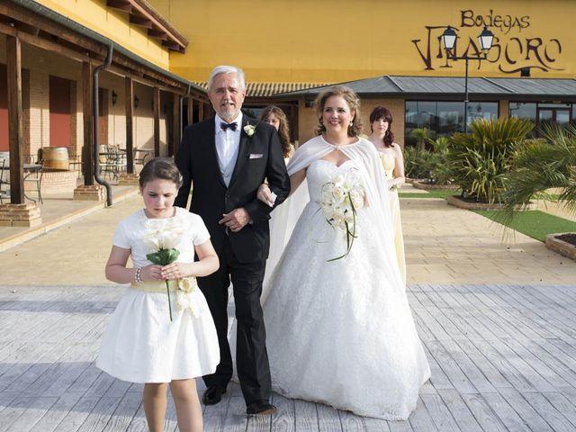 La boda de Ramón y Steffi en Alcazar De San Juan, Ciudad Real 16