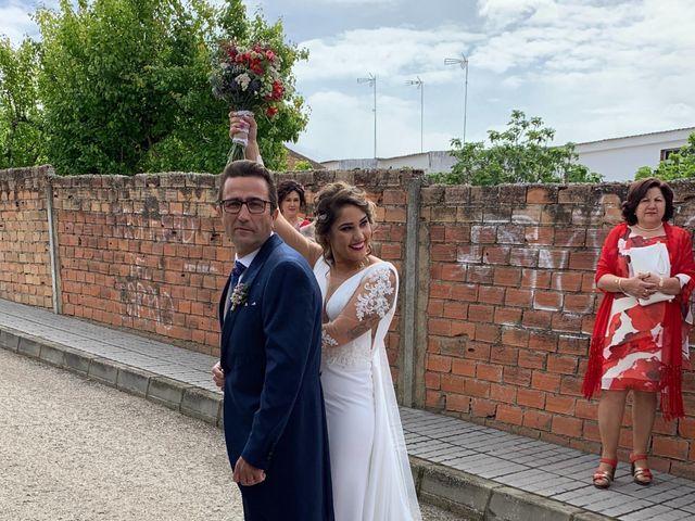 La boda de antonio y sara  en Fuente Palmera, Córdoba 10
