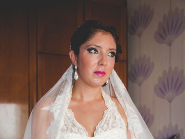 La boda de Javier y Marisol en Adra, Almería 8