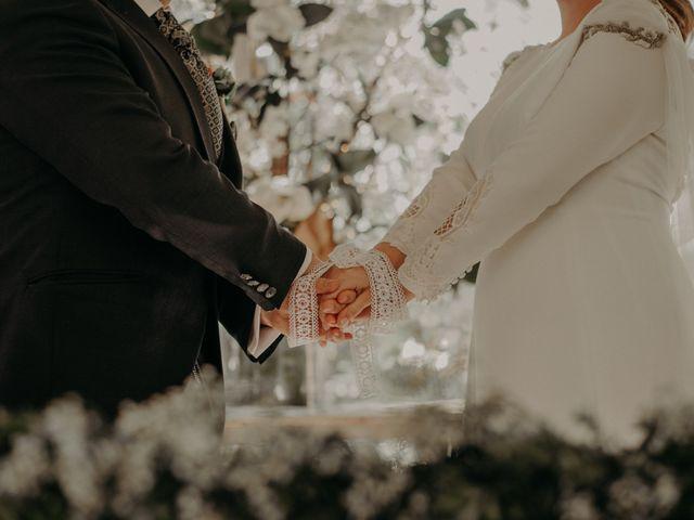 La boda de Federico y Irene en Illescas, Toledo 39