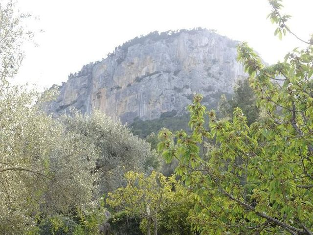 La boda de Luis  y Elo en Alaro, Islas Baleares 4