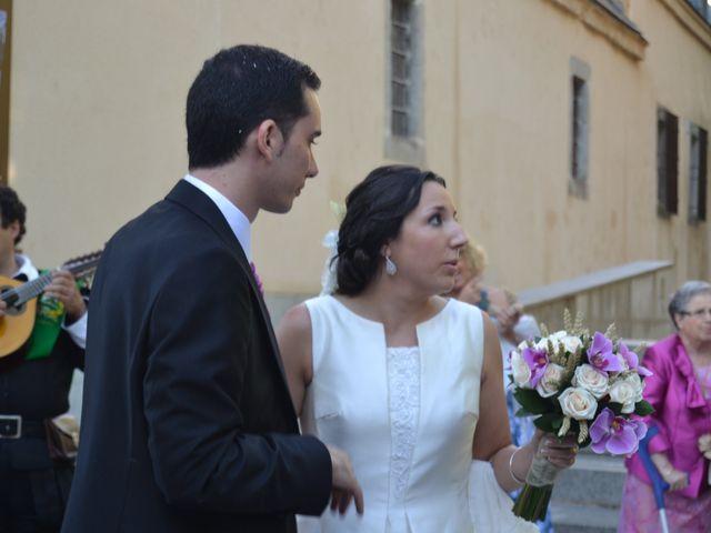 La boda de Nerea y David en Segovia, Segovia 2