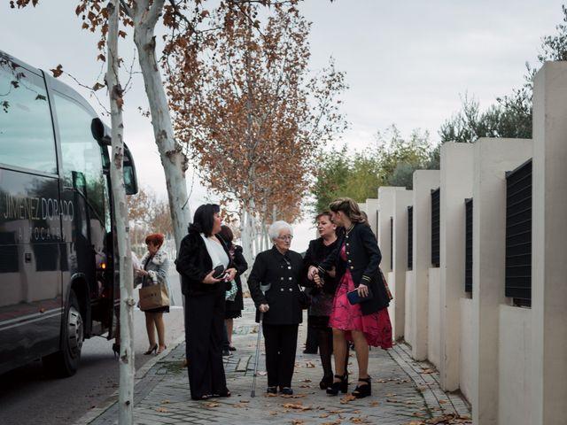 La boda de Marcelo y Miriam en Aranjuez, Madrid 15