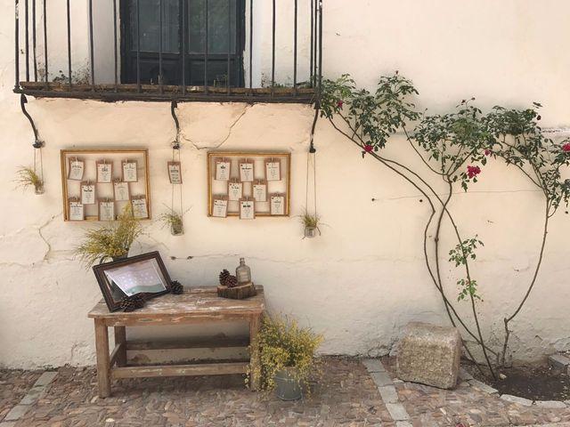 La boda de Celia y Miguel en Toledo, Toledo 6