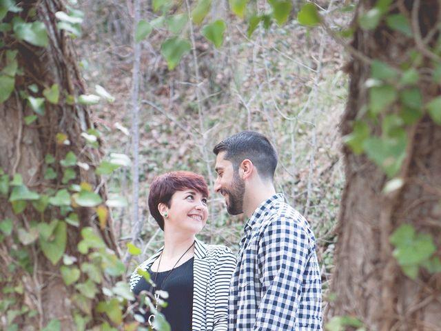La boda de Carlos y Noelia en Sax, Alicante 3