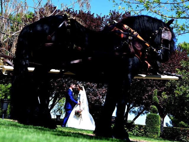 La boda de David  y Rebeca  en El Olivar, Guadalajara 15