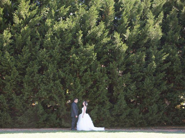 La boda de Iván y Verónica en Villasevil, Cantabria 22