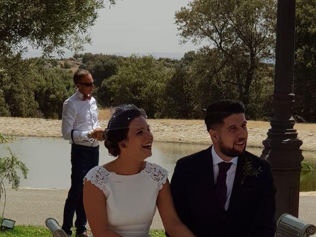 La boda de Cristina  y Christian en Toledo, Toledo 8