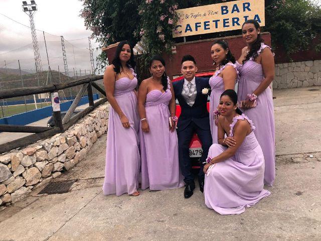 La boda de Héctor  y Diana en Ojen, Málaga 7