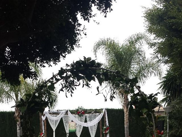 La boda de Martín y Melissa en Elx/elche, Alicante 3
