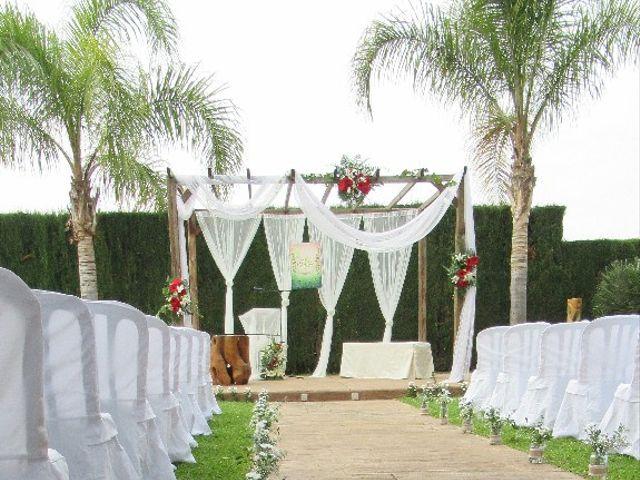 La boda de Martín y Melissa en Elx/elche, Alicante 7