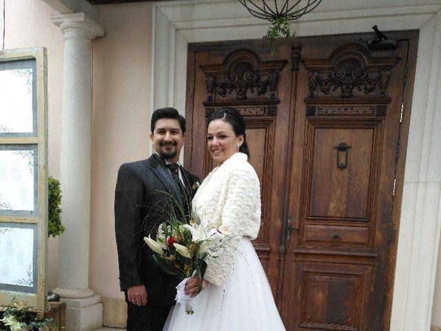 La boda de Martín y Melissa en Elx/elche, Alicante 8