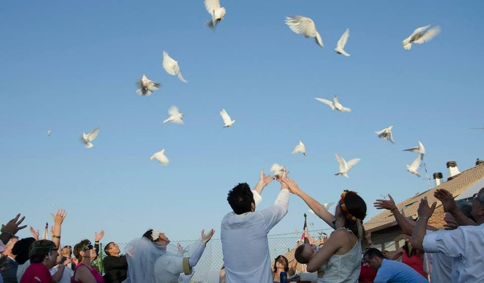 La boda de Gema y Luis en Seseña Viejo, Toledo