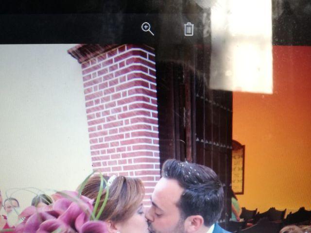 La boda de José  y Carmen  en Palma Del Rio, Córdoba 3