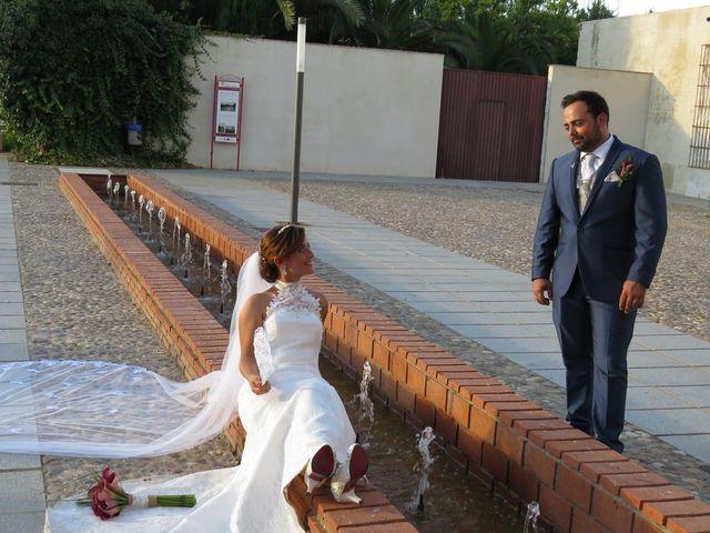La boda de José  y Carmen  en Palma Del Rio, Córdoba 7