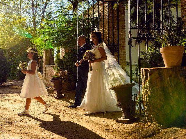 La boda de Javier y Elena en Toledo, Toledo 28