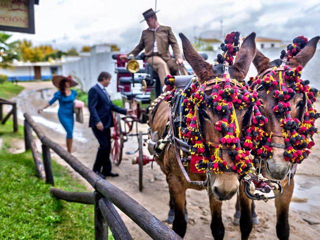 La boda de Joaquin y Lourdes en El Rocio, Huelva 7