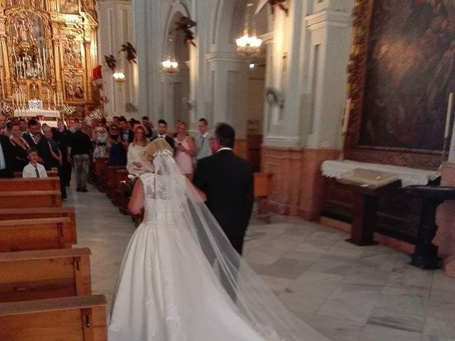 La boda de David y Elena en Málaga, Málaga 4
