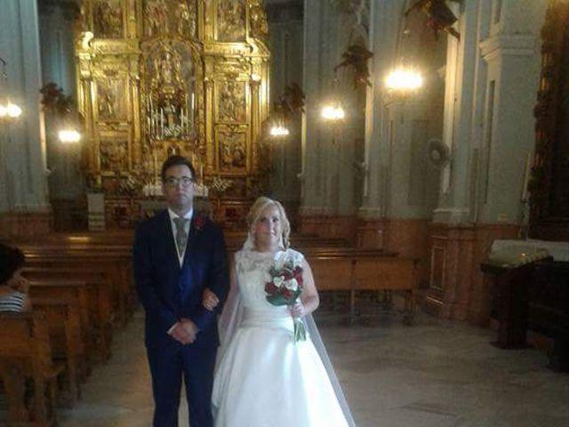 La boda de David y Elena en Málaga, Málaga 5