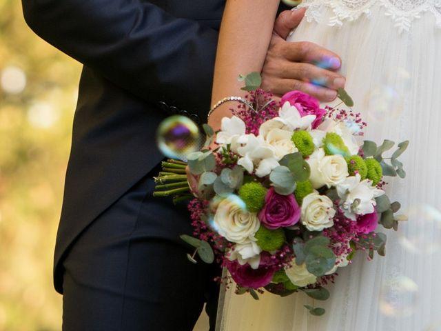 La boda de Raquel y Víctor en Villanubla, Valladolid 32