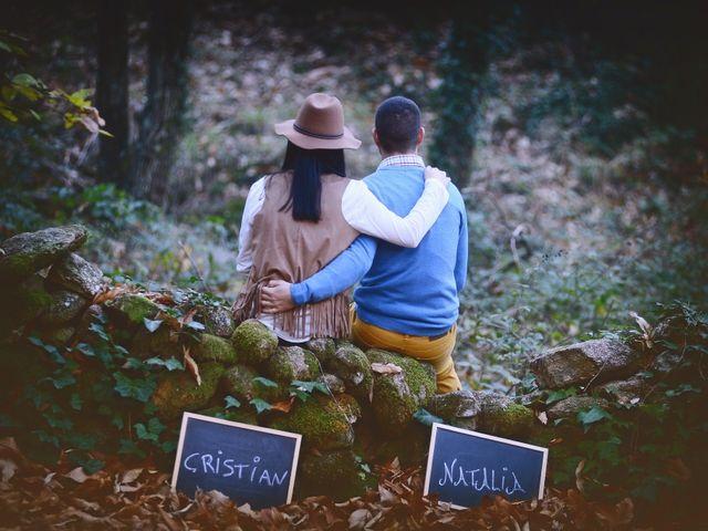La boda de Natalia y Cristian en Plasencia, Cáceres 7