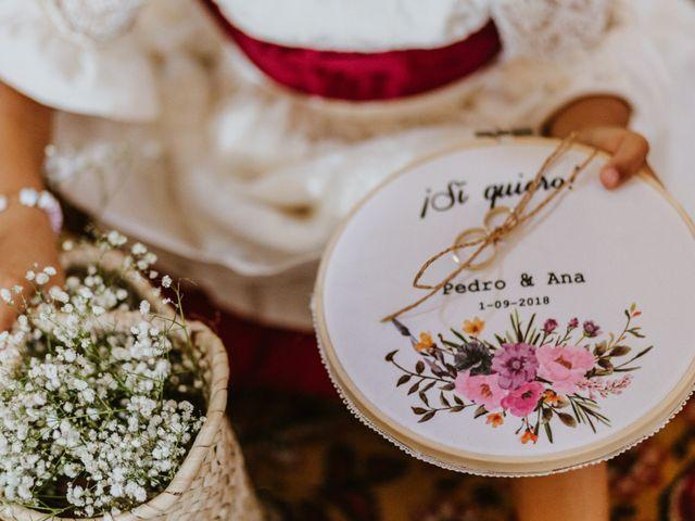 La boda de Pedro y Ana en El Cerro De Andevalo, Huelva 67