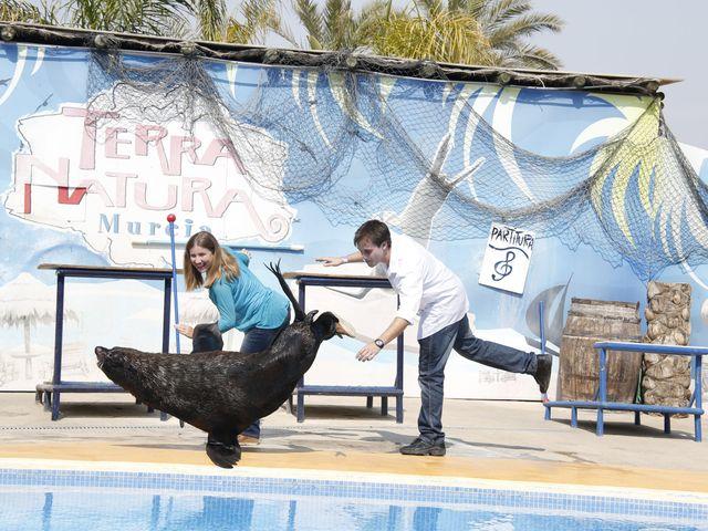 La boda de Guilermo y Elena en Murcia, Murcia 9