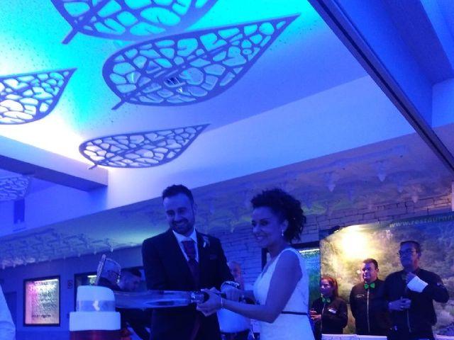 La boda de Emilio y Marta en Albacete, Albacete 6