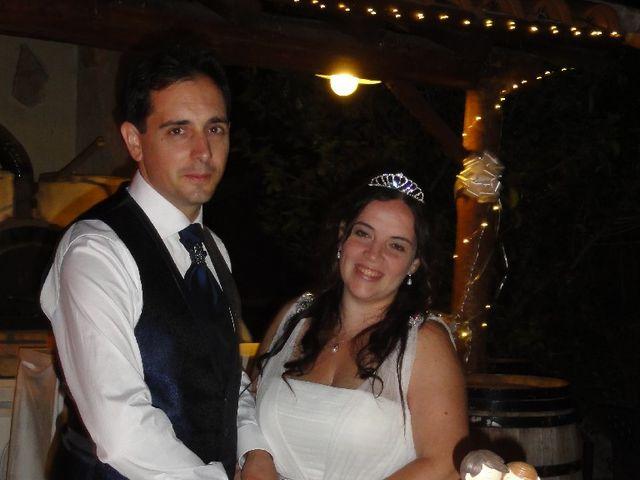 La boda de Daniel y Alexandra en Zarzuela Del Monte, Segovia 2