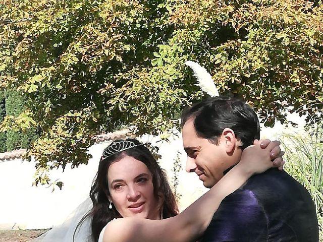 La boda de Daniel y Alexandra en Zarzuela Del Monte, Segovia 3