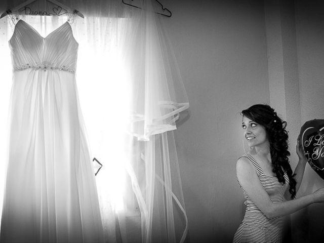 La boda de Victor y Diana en Aldea Del Fresno, Madrid 10