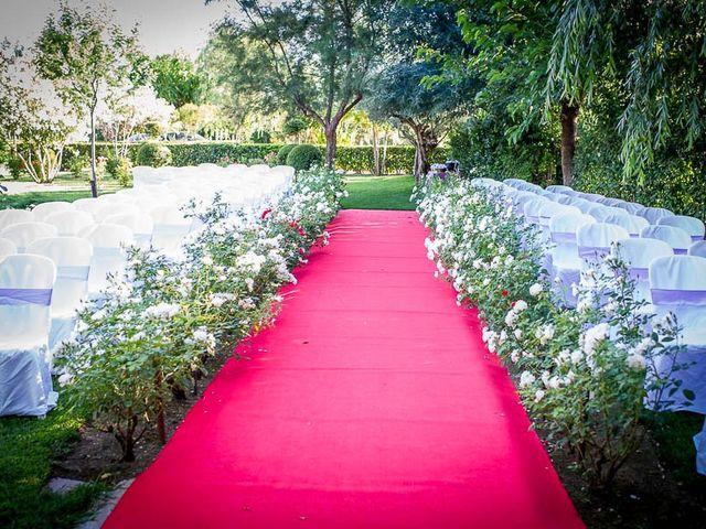 La boda de Victor y Diana en Aldea Del Fresno, Madrid 15