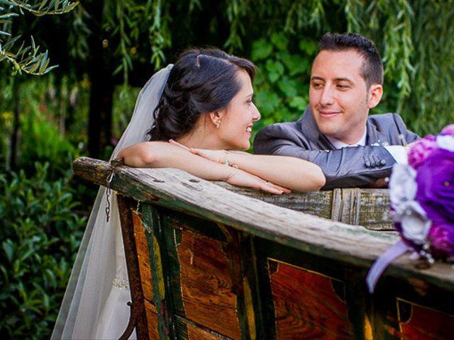 La boda de Victor y Diana en Aldea Del Fresno, Madrid 42