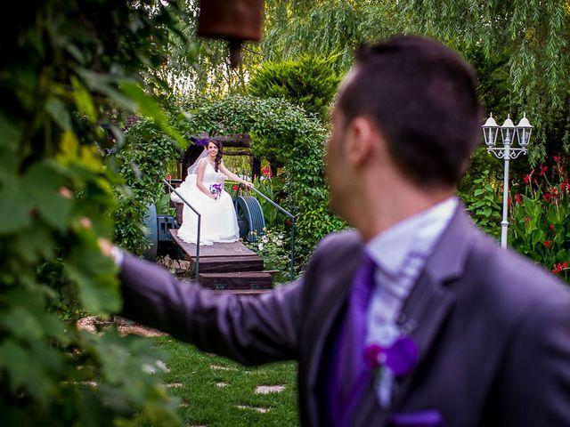 La boda de Victor y Diana en Aldea Del Fresno, Madrid 49