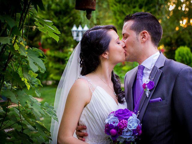 La boda de Victor y Diana en Aldea Del Fresno, Madrid 50
