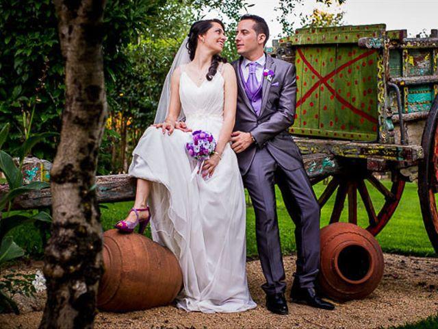 La boda de Victor y Diana en Aldea Del Fresno, Madrid 51