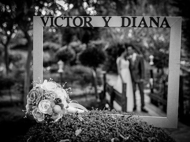 La boda de Victor y Diana en Aldea Del Fresno, Madrid 56