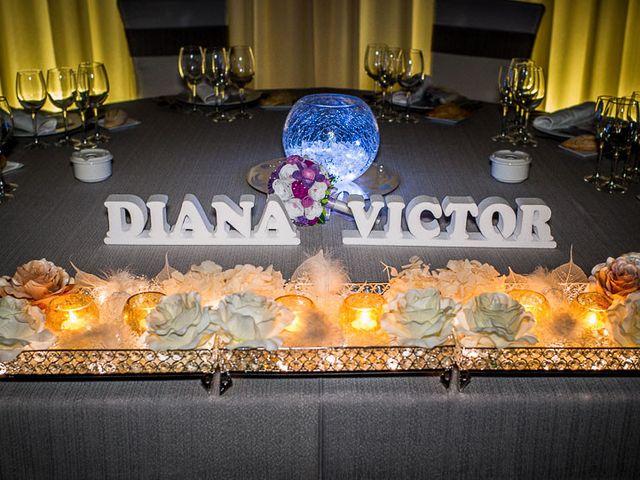 La boda de Victor y Diana en Aldea Del Fresno, Madrid 59