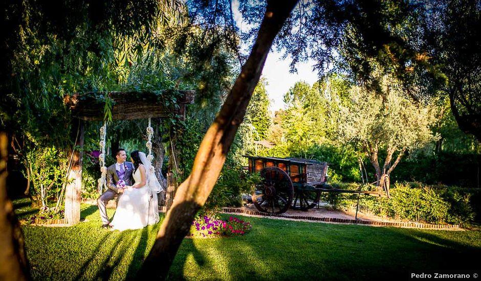 La boda de Victor y Diana en Aldea Del Fresno, Madrid