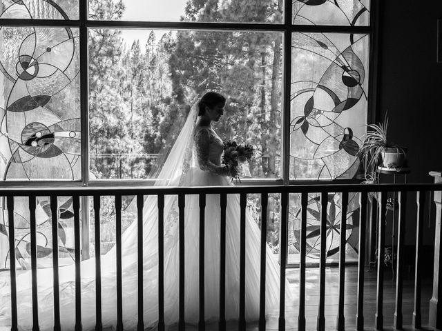La boda de Sergio y Aida en Vilaflor, Santa Cruz de Tenerife 15