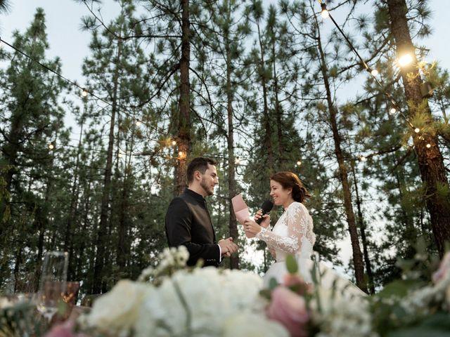 La boda de Sergio y Aida en Vilaflor, Santa Cruz de Tenerife 41