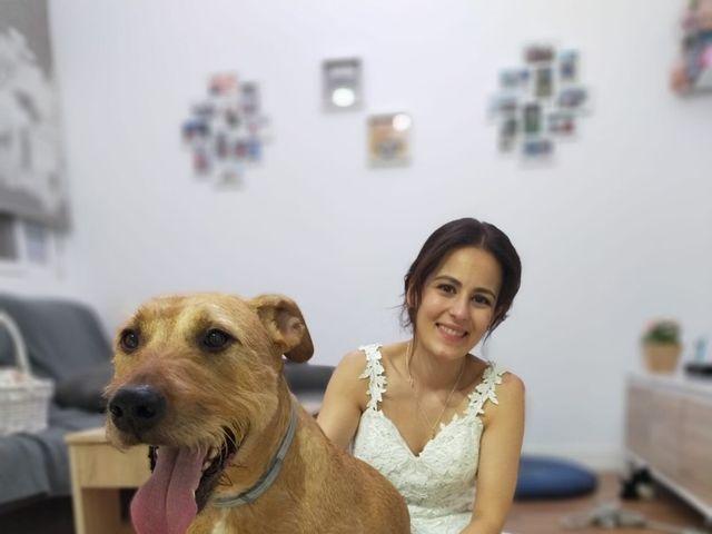 La boda de Jordi y Sandra en Elx/elche, Alicante 30