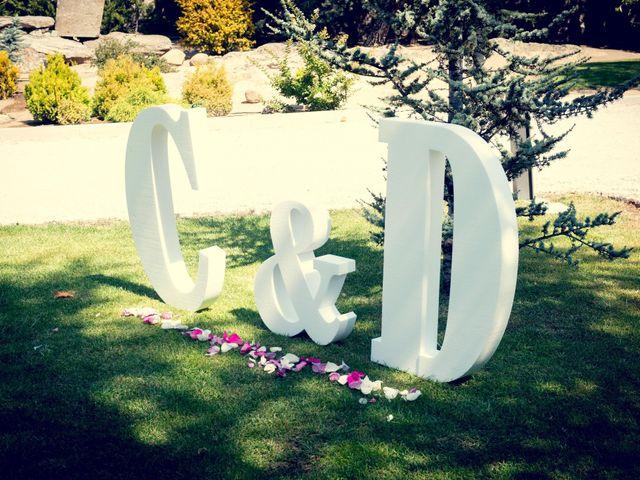 La boda de David y Cristina en Torrelodones, Madrid 20