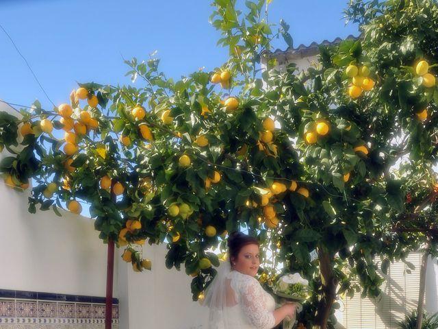 La boda de Angel y Pili en Santa Amalia, Badajoz 10