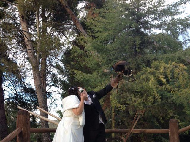 La boda de Ruben y Natalia en Chinchon, Madrid 7