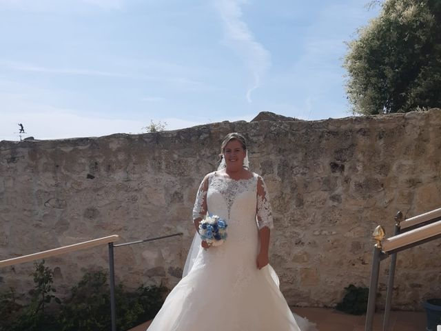 La boda de Miguel y Sara en Alba De Cerrato, Palencia 7