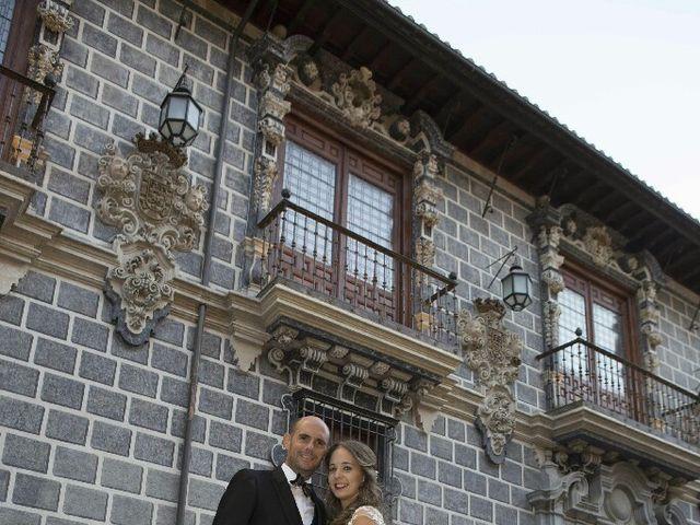 La boda de Sergio y Ana en Granada, Granada 24