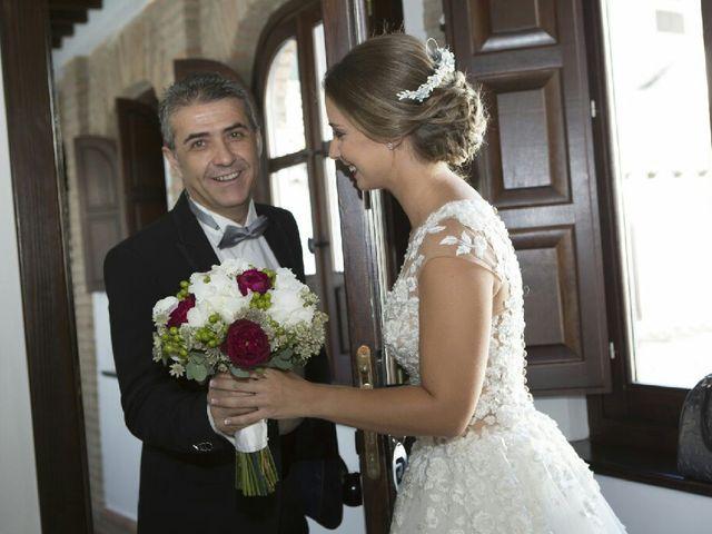 La boda de Sergio y Ana en Granada, Granada 25