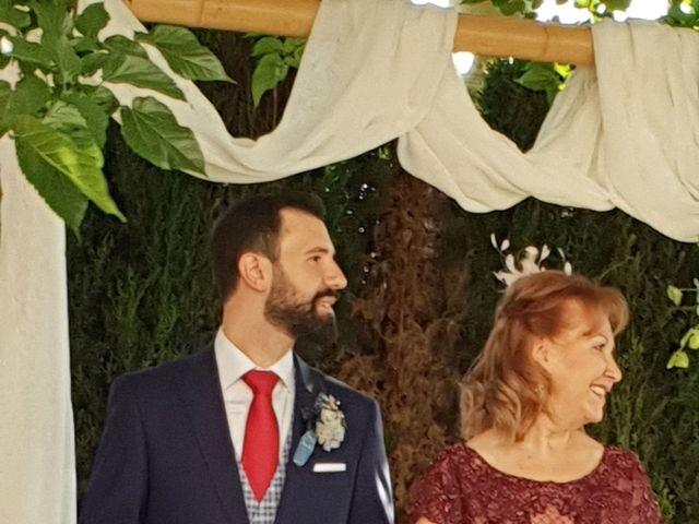 La boda de Carlos y Rosa en Albacete, Albacete 10