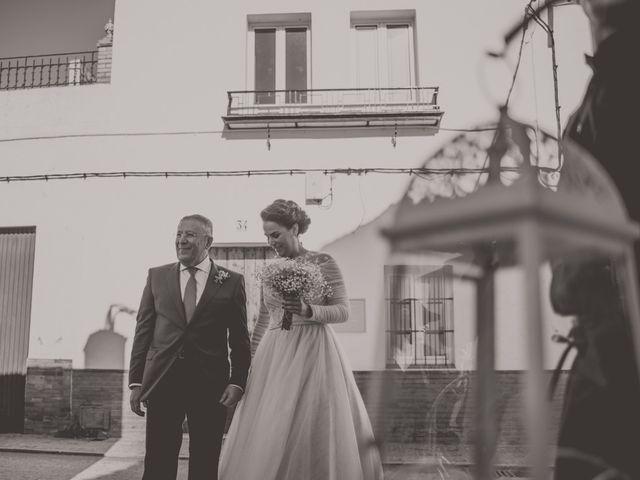 La boda de Enrique y Marina en Villanueva Del Ariscal, Sevilla 1
